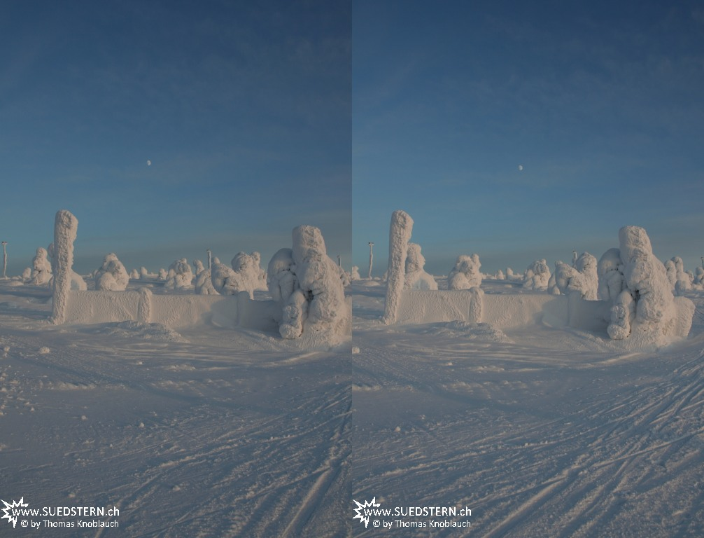 2012-02-03 - Frozen trees on Levi Hill, Finnaland 3D 2