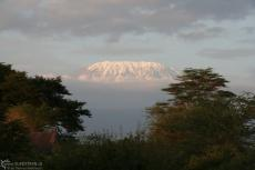 IMG 7819-Kenya, Kilimanjaro at dawn seen from Zebra Lodge in Kimana Reserve